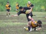 fuji185.jpg